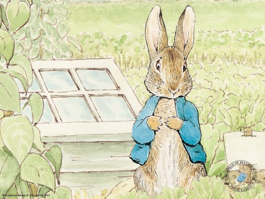 Peter Rabbit is a picture book example of an adventure story.